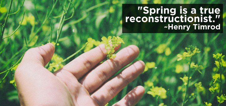 Spring is a True Reconstructionist