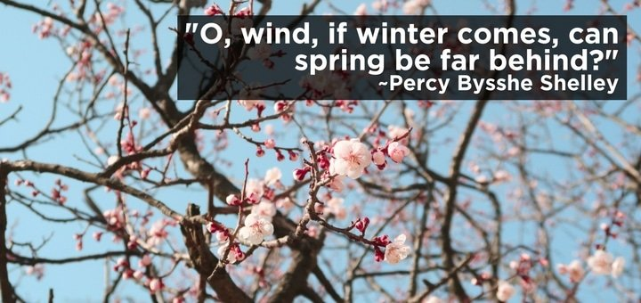 O, Wind, If Winter Comes, Can Spring Be Far Behind?