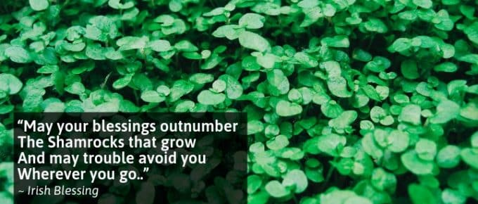 May your blessings outnumber The Shamrocks that grow And may trouble avoid you Wherever you go.